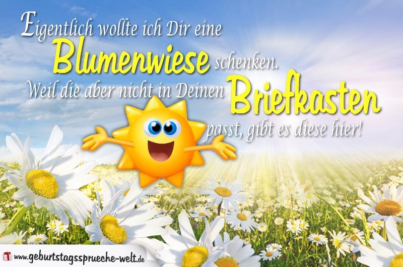 Blumenwiese Geburtstagskarte Sprüche Zum Geburtstag