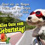 Glückwunschkarte zum Geburtstag: Hund fährt im Auto und schaut aus dem Beifahrerfenster