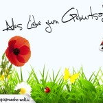 Geburtstagskarte mit Blumenwiese und Marienkäfer für jedes Alter