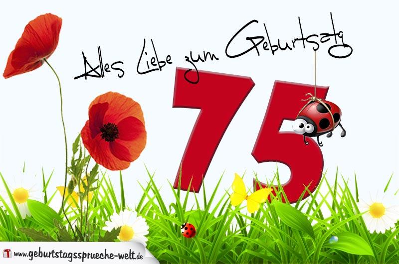 Geburtstagskarte Mit Blumenwiese Zum 75 Geburtstag