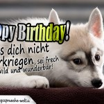 Happy Birthday Geburtstagskarte mit traurigem Hund