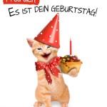 Lachende Katze überreicht kleinen Geburtstagskuchen mit Kerze
