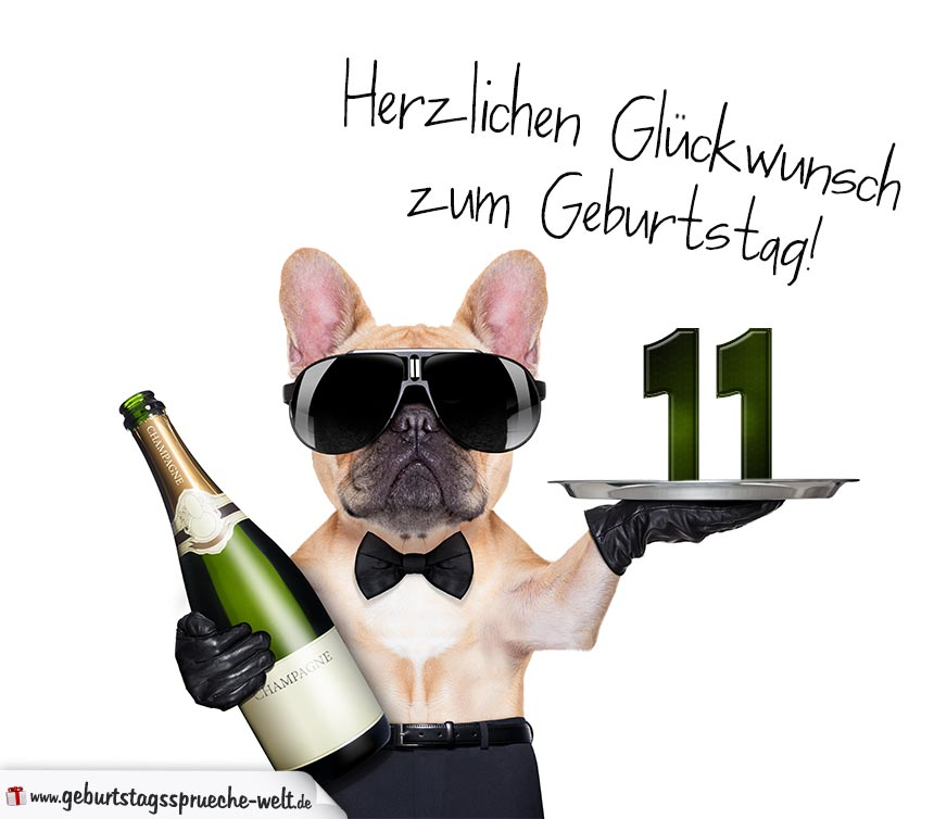 Gluckwunschkarte Mit Hund Zum 11 Geburtstag Geburtstagsspruche Welt