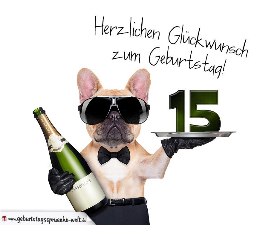 Glückwunschkarte mit Hund zum 15. Geburtstag   Geburtstagssprüche Welt