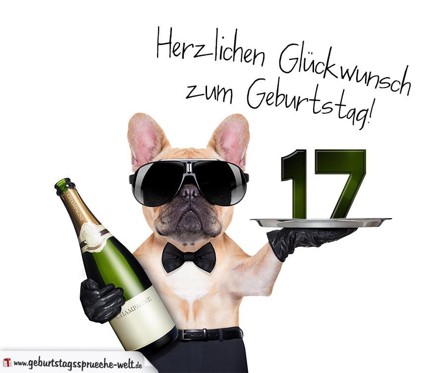 Glückwunschkarte Mit Hund Zum 17 Geburtstag