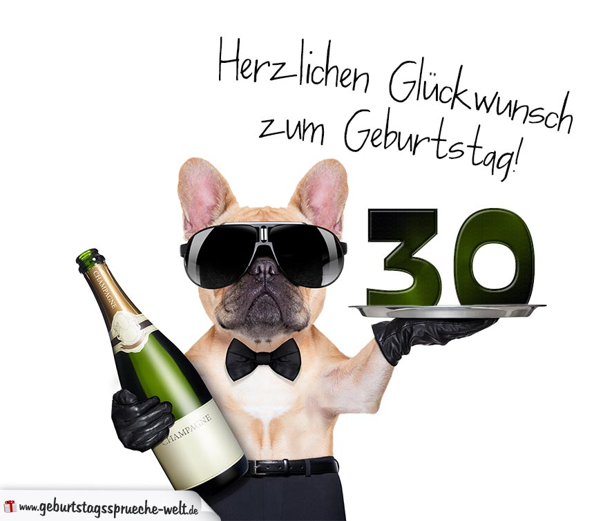 gl ckwunschkarte mit hund zum 30 geburtstag. Black Bedroom Furniture Sets. Home Design Ideas