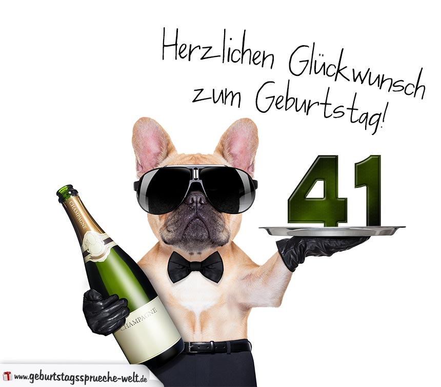 Glückwunschkarte Mit Hund Zum 41 Geburtstag