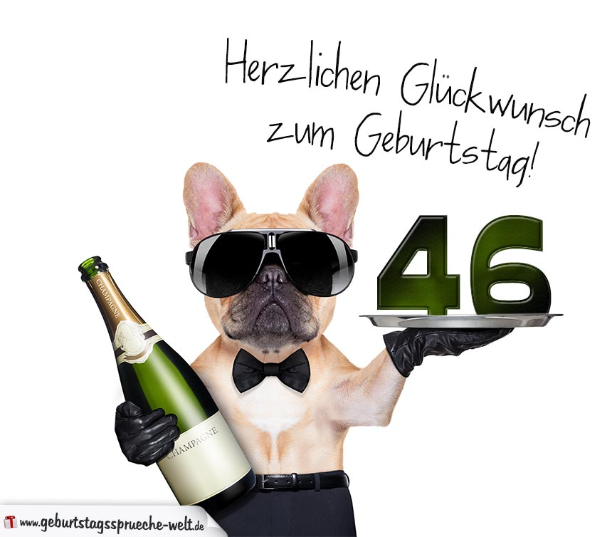 Glückwunschkarte mit Hund zum 46. Geburtstag - Geburtstagssprüche-Welt