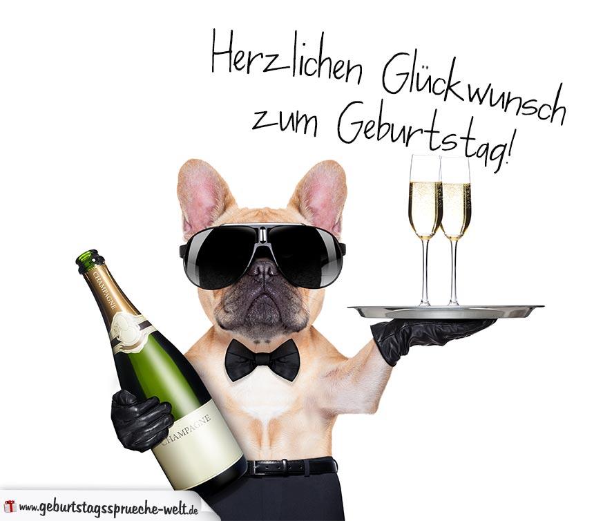 Gluckwunschkarte Zum Geburtstag Mit Mit Coolem Hund