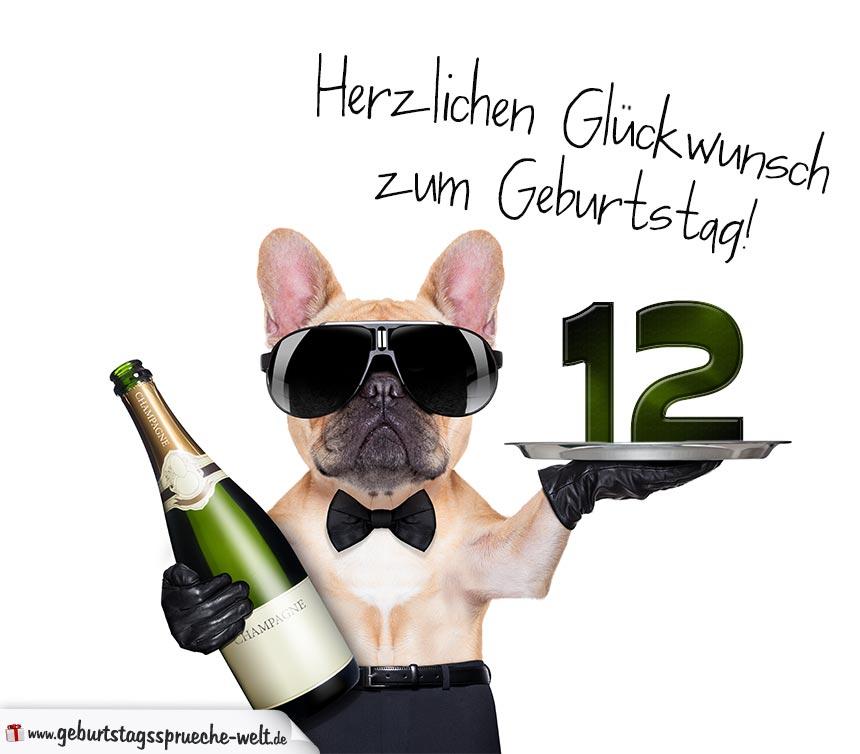 glückwunschkarte zum geburtstag mit mit coolem hund