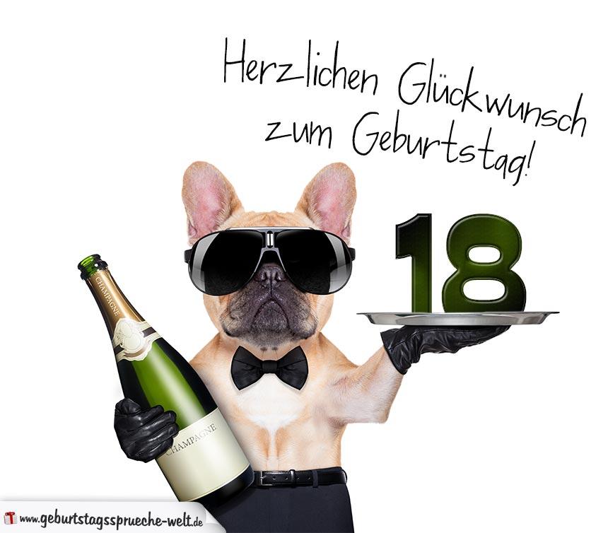 glückwunschkarte mit hund zum 18. geburtstag - geburtstagssprüche-welt