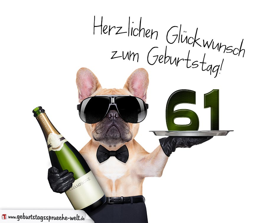 Glückwunschkarte mit Hund zum 61. Geburtstag ...