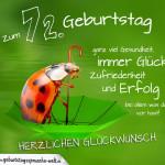 Geburtstagskarte mit Marienkäfer auf Regenschirm zum 72. Geburtstag