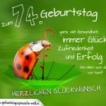 Geburtstagskarte mit Marienkäfer auf Regenschirm zum 74. Geburtstag