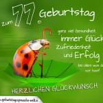 Geburtstagskarte mit Marienkäfer auf Regenschirm zum 77. Geburtstag