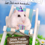 Geburtstagskarte mit Hamster und Spruch