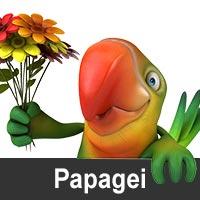 Geburtstagskarten mit Papageimotiven