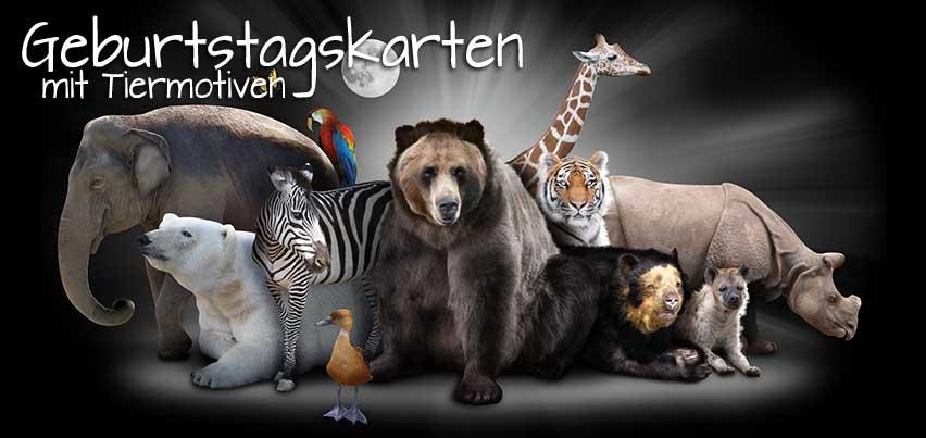 Kostenlose Geburtstagskarten mit vielen verschiedenen Tiermotiven