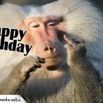 Happy Birthday lustig - Affe mit Stinkefinger