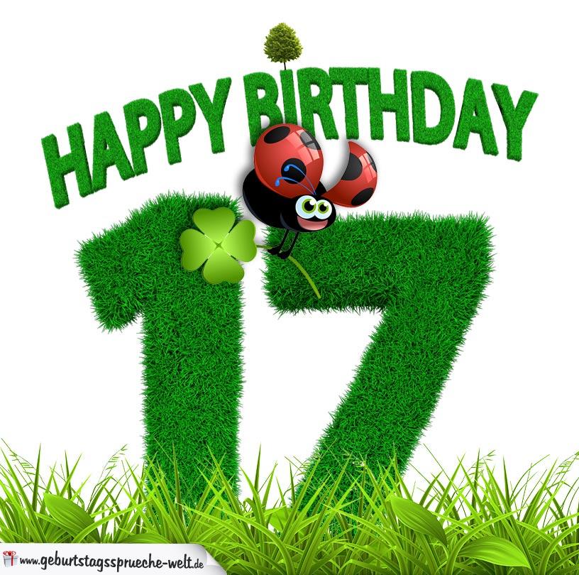 17. Geburtstag als Graszahl Happy Birthday - Geburtstagssprüche-Welt