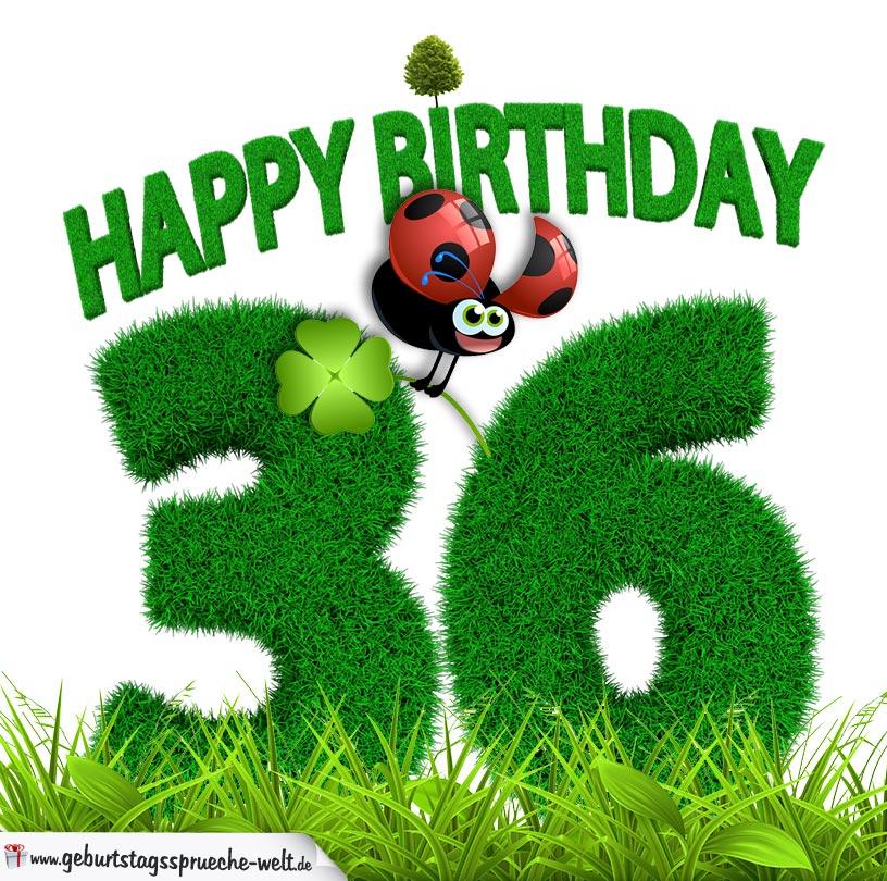 36 Geburtstag Als Graszahl Happy Birthday Geburtstagssprüche Welt