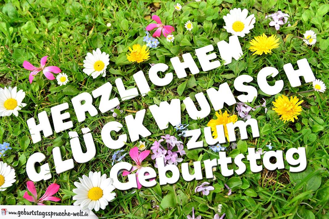 Popular Herzlichen Glückwunsch zum Geburtstag - Geburtstagssprüche-Welt NB29