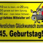 Gelbes Schild mit Esel und Ritter zum 45. Geburtstag