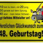 Gelbes Schild mit Esel und Ritter zum 48. Geburtstag
