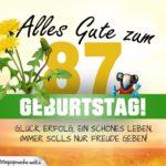 87. Geburtstag - Geburtstagskarte ALLES GUTE mit schönem Spruch