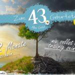 43. Geburtstag - Geburtstagskarte 12 Monate Sonnenschein