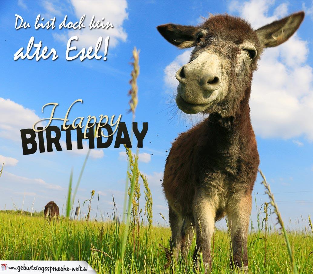 Geburtstagskarte Alter Esel